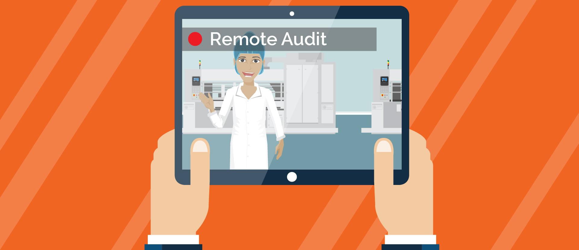 Remote Audits